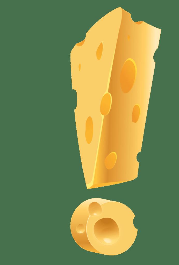 selber kaese machen